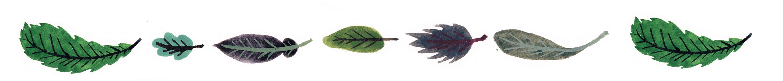 葉っぱライン