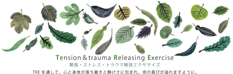 Miyakawa Masato office | TRE 緊張 ストレス トラウマ 宮城 仙台